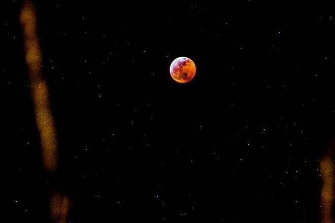 Super Blood Wolf Moon 2019 Tsawwassen, BC