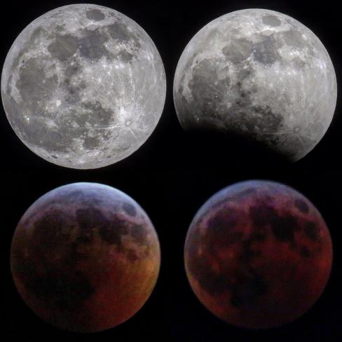 blood moon january 2019 ontario - photo #4