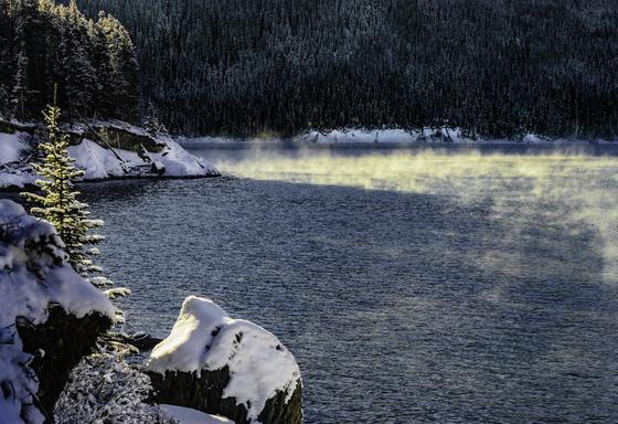 Morning Mist on Lake