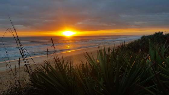 A new day at Gamble Rogers