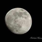 La lune est tout simplement parfaite!!!