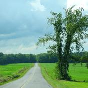 Quand la route touche au ciel