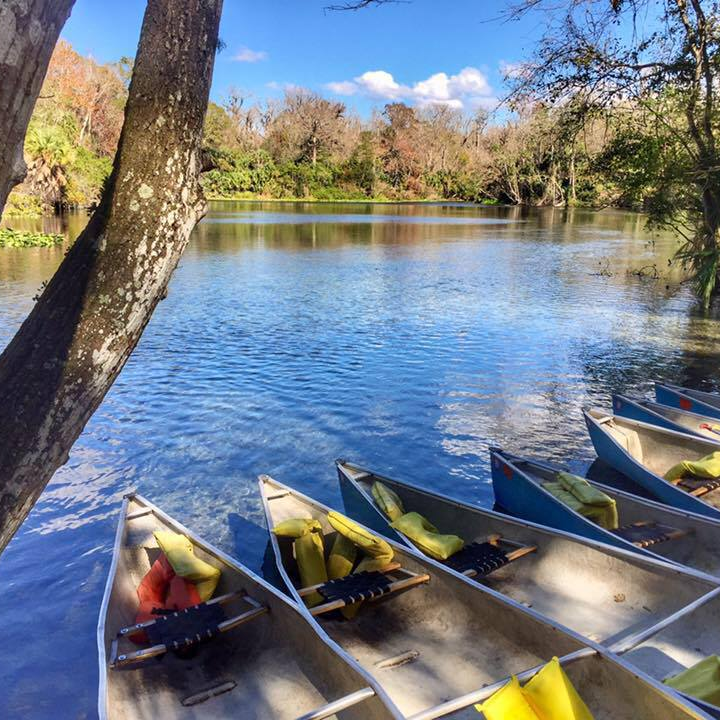 Beautiful day for a paddle along the Wekiva River