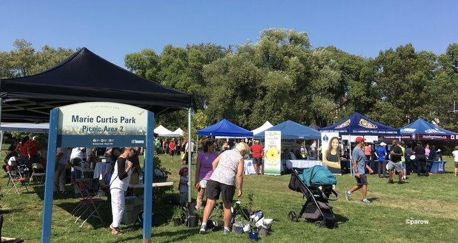 A festival for trees in Toronto on this steamy hot Sept. 22 day Marie Curtis Park, Forty Second Street, Etobicoke, ON