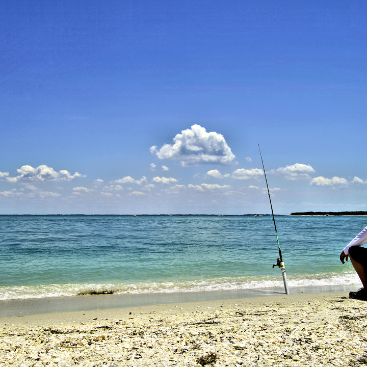 Surf fishing in the tropical waters of the Gulf of Mexico