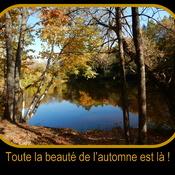 Beauté de l'automne!