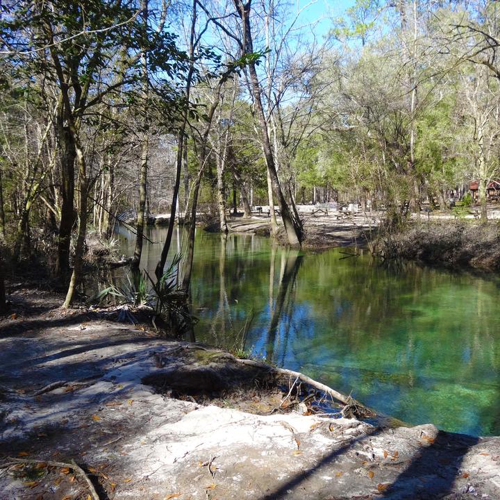 Ponce De Leon Natural Pool