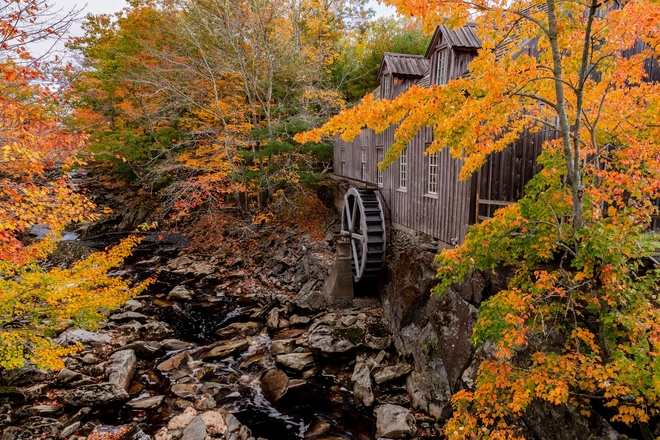 Fall Colours At The Mill Sable River, Nova Scotia