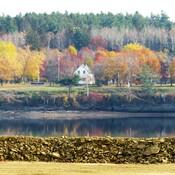 Autumn in the Miramichi N.B