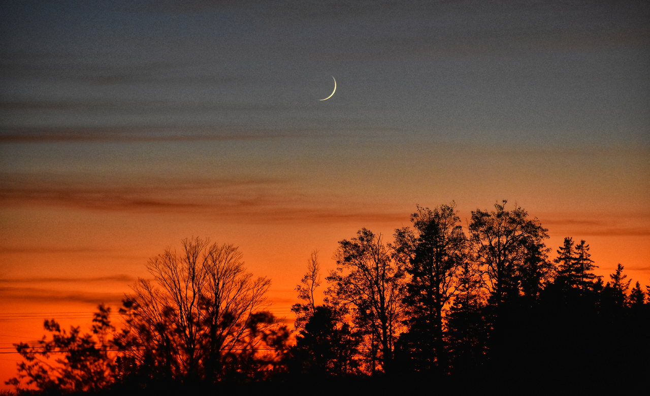 The new moon in the twilight