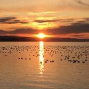 Couché de soleil sur le lac saint jean