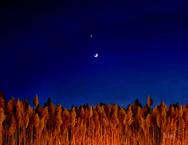 Venus Complimenting the Crescent Moon Chatham-Kent, ON