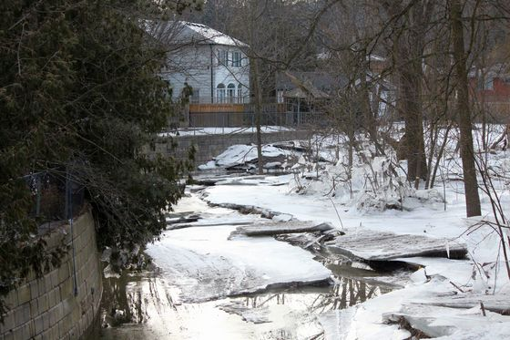 Humber River flooding recedes March 18/19