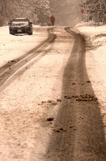 The winter scene at Ottawa Experimental Park
