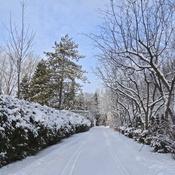 Paysage hivernal ce matin...