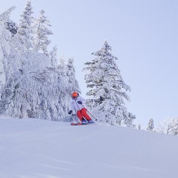 Super beau ski