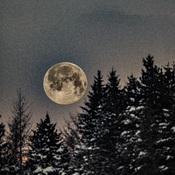 Super lune de Février 2020