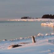 Moments d'hiver paisibles
