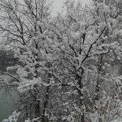 neige mouillée / sticky snow
