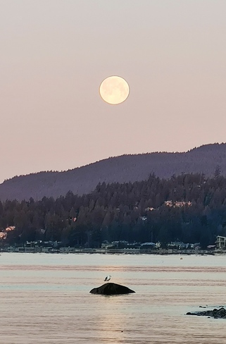 Worm moon setting West Vancouver, BC