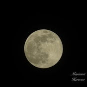 "Super lune "" lune rose"" 🌕"