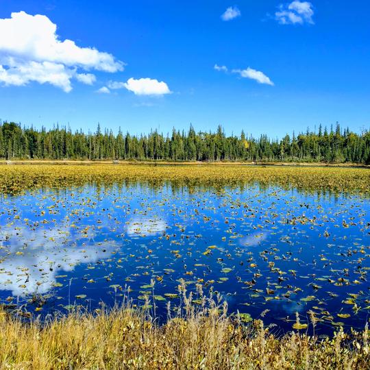 Brainard Lakes Recreation Area