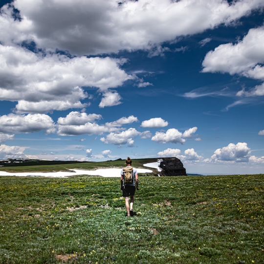 Medicine Bow-Routt National Forests & Thunder Basin National Grassland