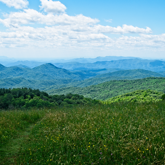 National Forests in North Carolina