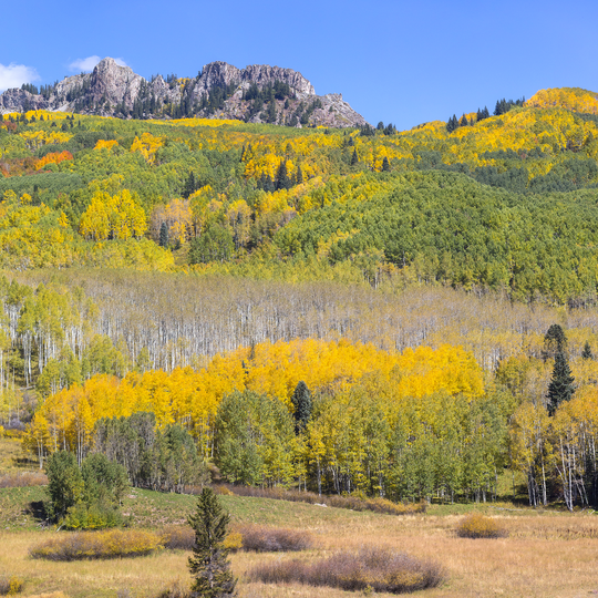 Grand Mesa Uncompahgre and Gunnison National Forests