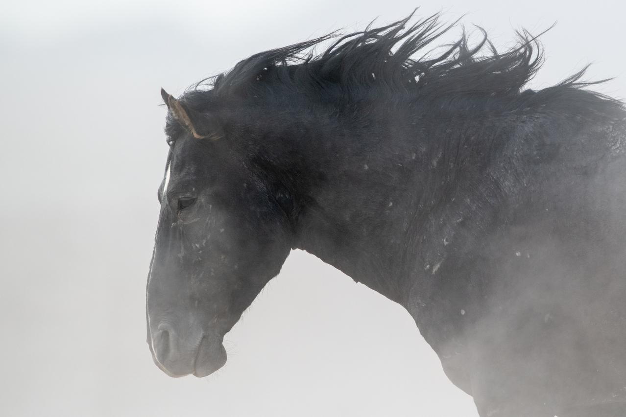 Pony Express National Historic Trail