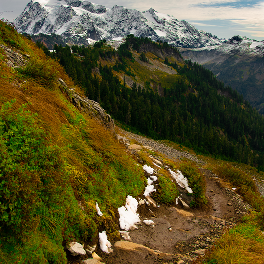 Mt. Baker-Snoqualmie National Forest