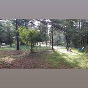 Notre petit parc personnel