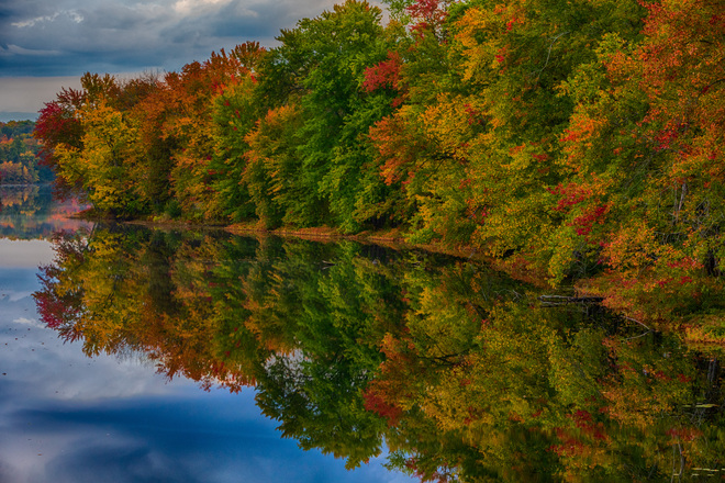 Trees changing colours along the Moira River 448 Vanderwater Rd, Thomasburg, ON K0K 3H0, Canada