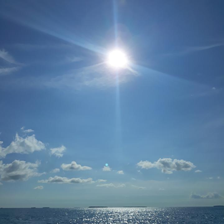 Sunshine in the Keys