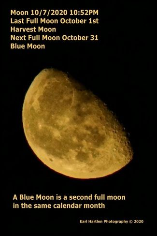 Blue Moon Norfolk County, ON