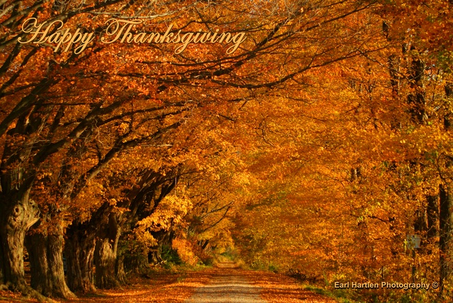 Happy Thanksgiving Norfolk County, ON