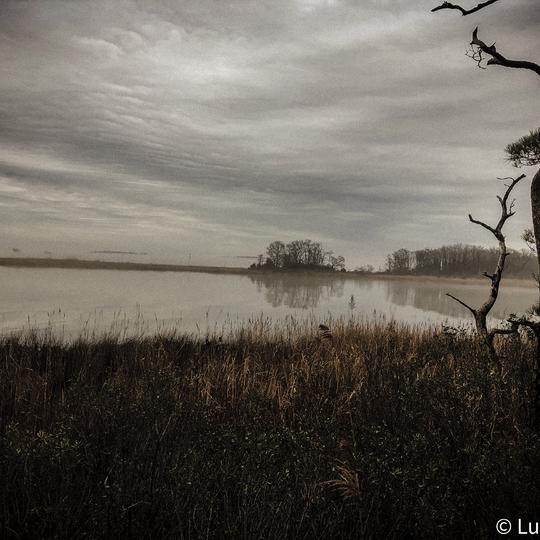 Eastern Neck National Wildlife Refuge