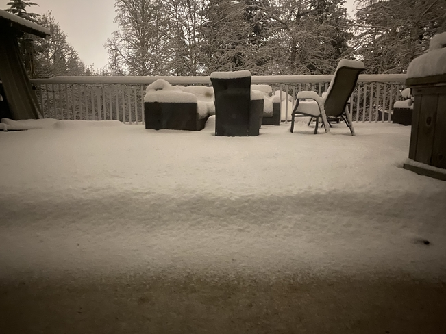 My back deck this morning. Prince George, British Columbia, CA