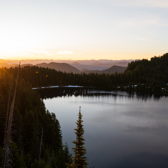 Mount Baker–Snoqualmie National Forest