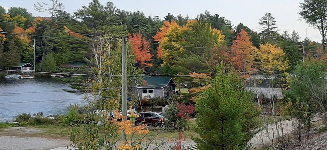 Fall Colours Kenora, ON
