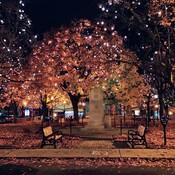 L' automne aux couleurs chatoyantes.