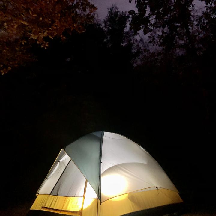 Camping Under the Moonlight