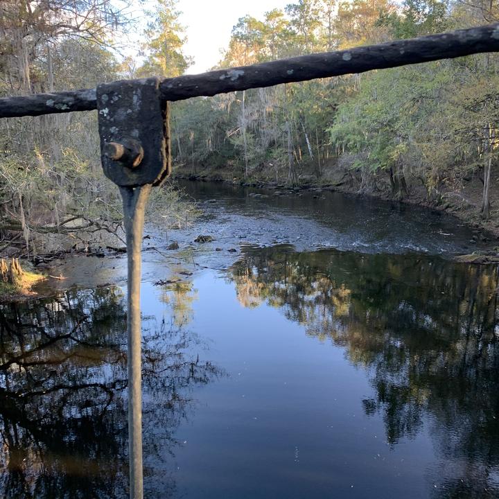 Suspension Bridge View