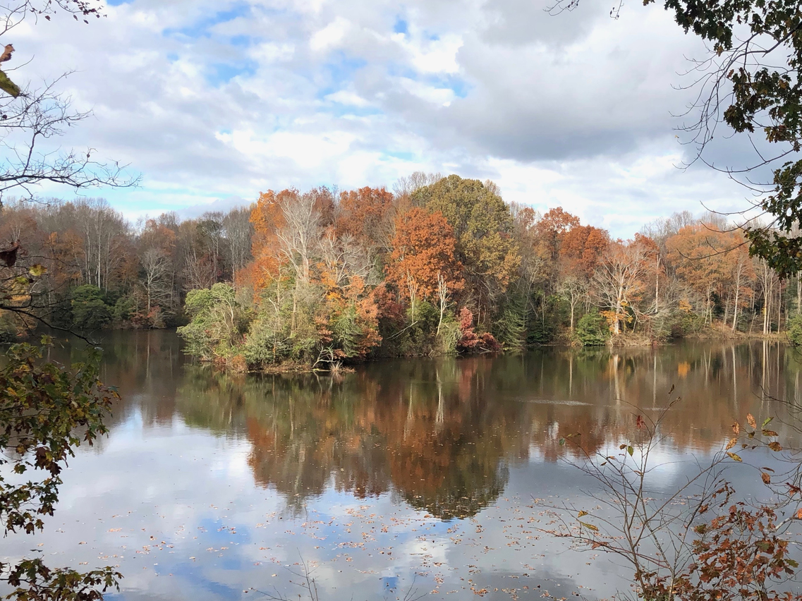 Rappahannock River Valley National Wildlife Refuge