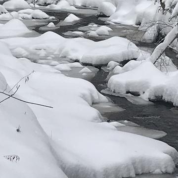 Première tempête de neige de la saison .