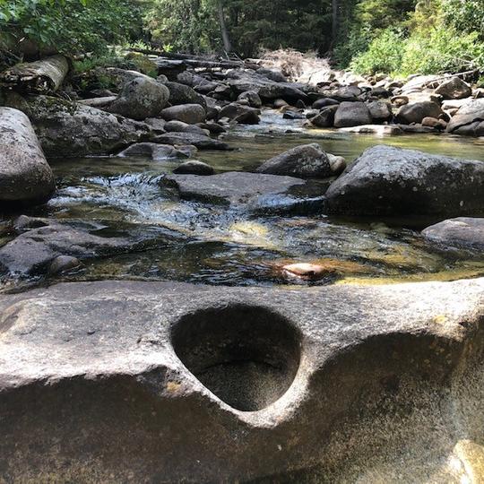 Kaniksu National Forest