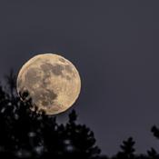 Pleine lune froide