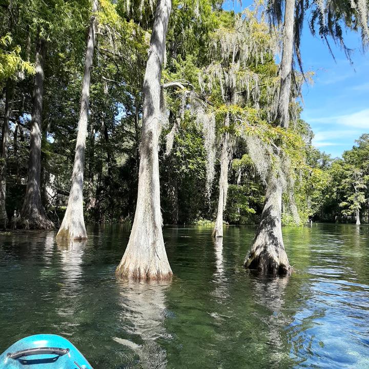 kayaking in the spring