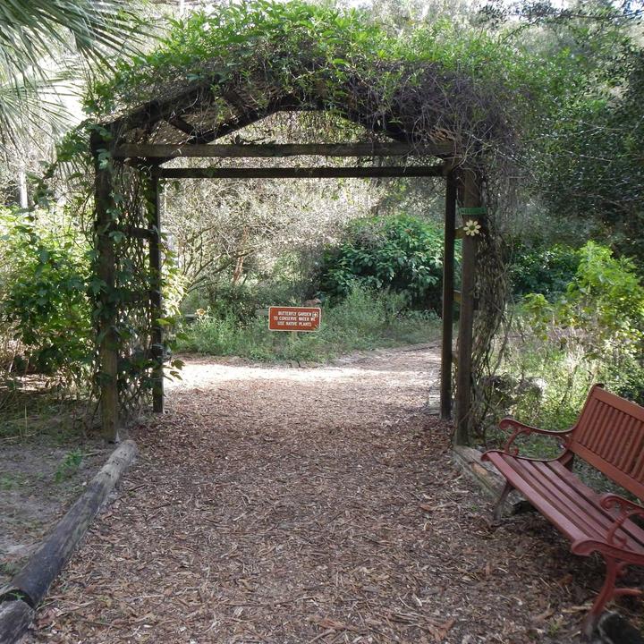 Butterfly Garden Awaits