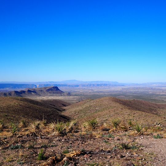Big Bend National Park